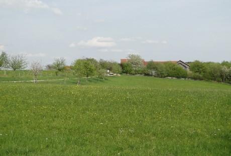 Der Hof im Frühling